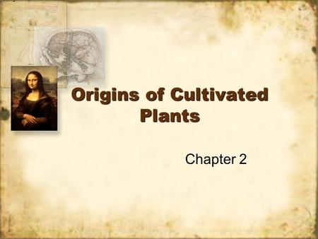 Origins of Cultivated Plants Chapter 2. Why were plants domesticated? Steady food source. Higher TDN Storage Steady food source. Higher TDN Storage.