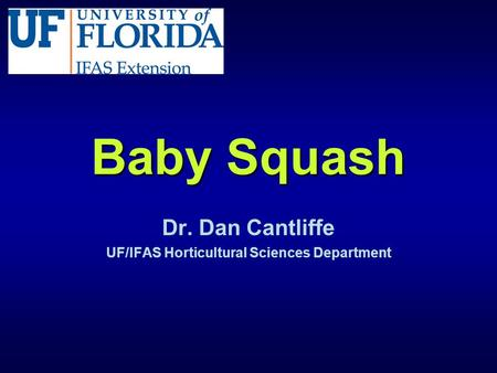 Baby Squash Dr. Dan Cantliffe UF/IFAS Horticultural Sciences Department.