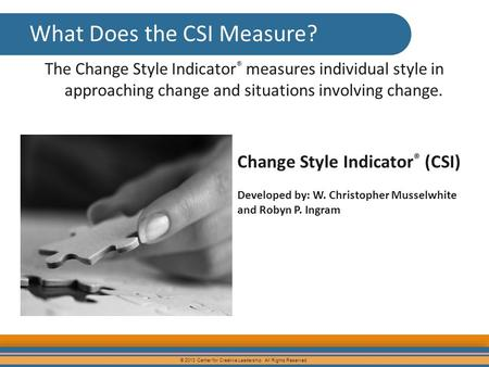 What Does the CSI Measure?