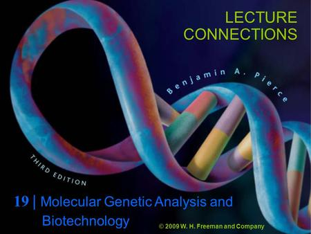 LECTURE CONNECTIONS 19 | Molecular Genetic Analysis and © 2009 W. H. Freeman and Company Biotechnology.