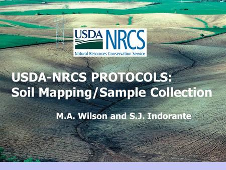 USDA-NRCS PROTOCOLS: Soil Mapping/Sample Collection M.A. Wilson and S.J. Indorante.