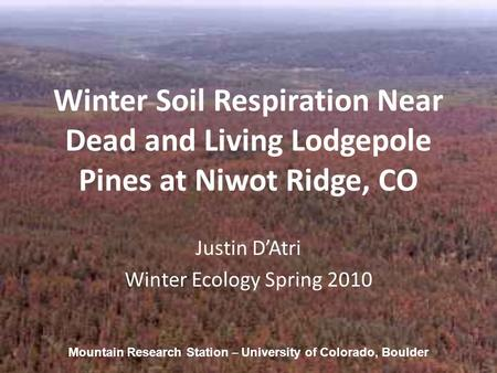 Winter Soil Respiration Near Dead and Living Lodgepole Pines at Niwot Ridge, CO Justin D'Atri Winter Ecology Spring 2010 Mountain Research Station – University.