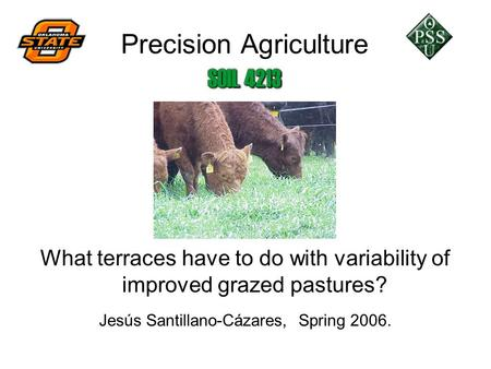 Precision Agriculture What terraces have to do with variability of improved grazed pastures? Jesús Santillano-Cázares, Spring 2006.