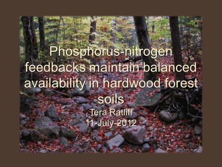 Phosphorus-nitrogen feedbacks maintain balanced availability in hardwood forest soils Tera Ratliff 11-July-2012.