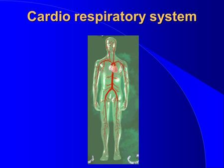 Cardio respiratory system. CONSISTS OF - qHeart - pump qBlood vessels - transport system qBlood - contains oxygen, nutrients & waste products qLungs -