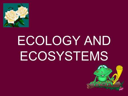 ECOLOGY AND ECOSYSTEMS. ECOLOGY IS THE STUDY OF THE INTERACTIONS BETWEEN ORGANISMS AND THEIR ENVIRONMENTS.