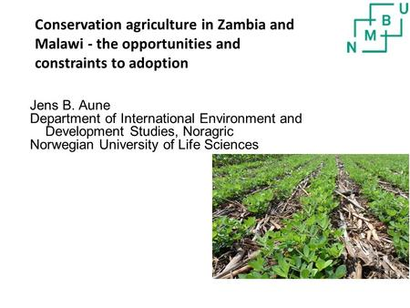 Jens B. Aune Department of International Environment and Development Studies, Noragric Norwegian University of Life Sciences Conservation agriculture in.