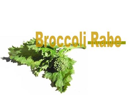  Broccoli rabe, also called rapini, is a common leafy green vegetable in the cuisine of Southern Italy and China  This plant is actually not related.