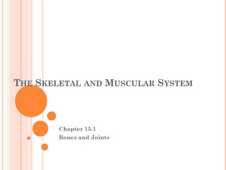 T HE S KELETAL AND M USCULAR S YSTEM Chapter 15.1 Bones and Joints.