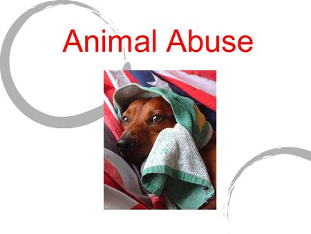 Animal Abuse. Statistics Animal cruelty is often broken down into two main categories: active/commision and passive/omission.