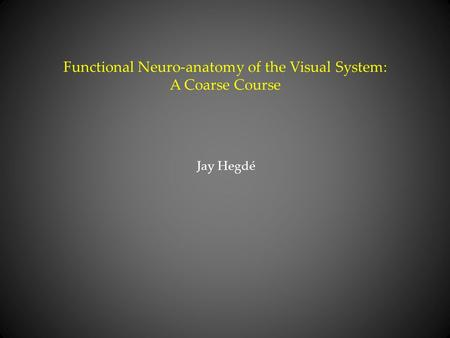 Functional Neuro-anatomy of the Visual System: A Coarse Course Jay Hegdé.