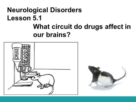 Neurological Disorders Lesson 5.1 What circuit do drugs affect in our brains?