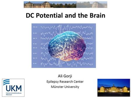 DC Potential and the Brain Ali Gorji Epilepsy Research Center Münster University.