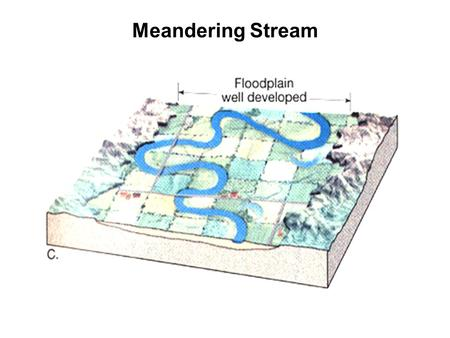 Meandering Stream. Floodplain Definitions Topographic: first flat surface found along the river above the bankfull channel; Geomorphic: landform composed.