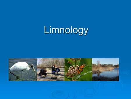 Limnology. What is Limnology?  Think about –ology? What does biology mean?  Limnology is the study of fresh waters.  Today we will study a pond ecosystem.