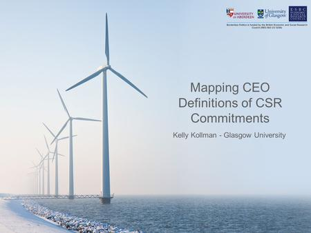 Mapping CEO Definitions of CSR Commitments