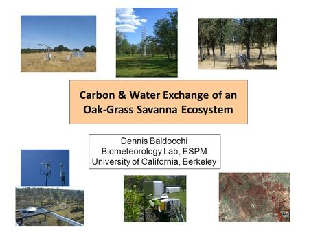 Carbon & Water Exchange of an Oak-Grass Savanna Ecosystem Dennis Baldocchi Biometeorology Lab, ESPM University of California, Berkeley.