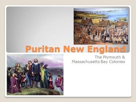 Puritan New England The Plymouth & Massachusetts Bay Colonies.