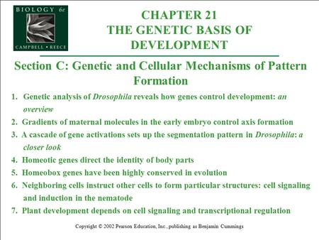 CHAPTER 21 THE GENETIC BASIS OF DEVELOPMENT Copyright © 2002 Pearson Education, Inc., publishing as Benjamin Cummings Section C: Genetic and Cellular Mechanisms.