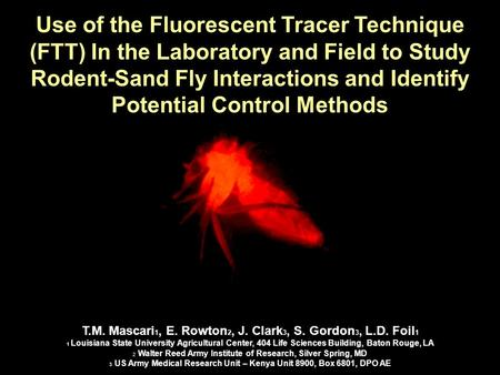 Use of the Fluorescent Tracer Technique (FTT) In the Laboratory and Field to Study Rodent-Sand Fly Interactions and Identify Potential Control Methods.