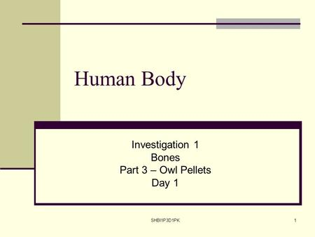SHBI1P3D1PK1 Human Body Investigation 1 Bones Part 3 – Owl Pellets Day 1.