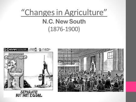 """Changes in Agriculture"" N.C. New South (1876-1900)"