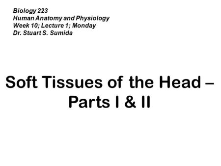 Biology 223 Human Anatomy and Physiology Week 10; Lecture 1; Monday Dr. Stuart S. Sumida Soft Tissues of the Head – Parts I & II.