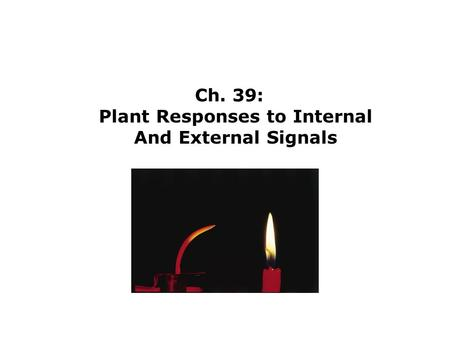 Ch. 39: Plant Responses to Internal And External Signals.