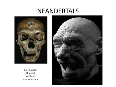 NEANDERTALS La Chapelle (France) skull and reconstruction.