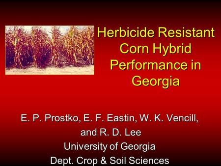 Herbicide Resistant Corn Hybrid Performance in Georgia E. P. Prostko, E. F. Eastin, W. K. Vencill, and R. D. Lee and R. D. Lee University of Georgia Dept.