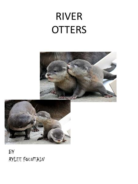 RIVER OTTERS BY RYLEE FOUNTAIN. ChapterPage 1. where they live1 2. Its body2 3. Its behavior3 4 endangered4 5 glossary5 6 fun facts 6 7 about the author7.
