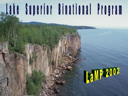 The Lake Superior Binational Program Initial and ongoing focus upon bioaccumulative toxins. Basin-wide, ecosystem approach using a Lakewide Management.