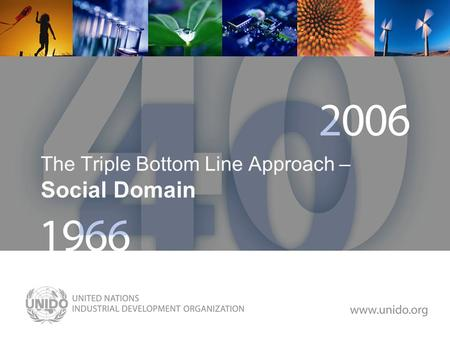 Www.unido.org The Triple Bottom Line Approach – Social Domain.