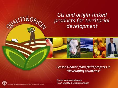 "GIs and origin-linked products for territorial development Lessons learnt from field projects in ""developing countries"" Emilie Vandecandelaere FAO, Quality."