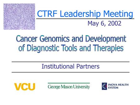 CTRF Leadership Meeting May 6, 2002 Institutional Partners.