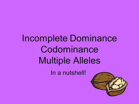 incomplete dominance codominance multiple alleles worksheet in plete dominance codominance and. Black Bedroom Furniture Sets. Home Design Ideas