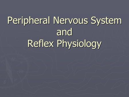 Peripheral Nervous System and Reflex Physiology.