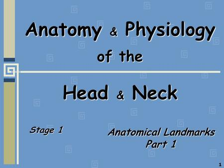 1 Anatomy & Physiology of the Head & Neck Stage 1 Anatomical Landmarks Part 1.