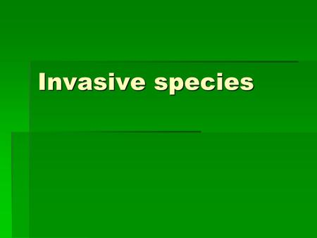 Invasive species. What do you think an invasive species in???