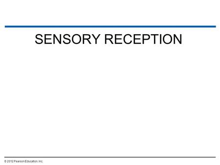 SENSORY RECEPTION © 2012 Pearson Education, Inc..