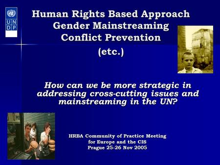 Human Rights Based Approach Gender Mainstreaming Conflict Prevention (etc.) How can we be more strategic in addressing cross-cutting issues and mainstreaming.