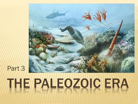 "Part 3. Clues from the Paleozoic Era help us understand how the diversity of life developed. The ""story"" of this era explains how early life-forms moved."