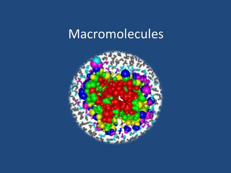 "Macromolecules. 1. What does ""macro"" mean in macromolecules? Macro means large."