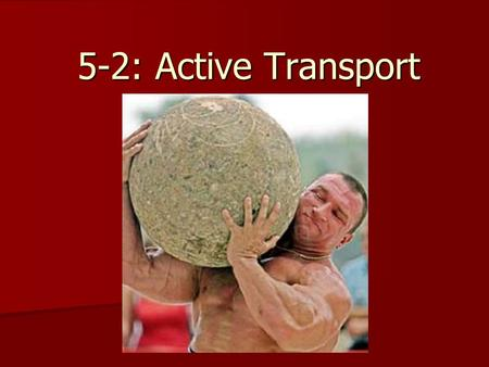 5-2: Active Transport. What is Active Transport? In many cases, cells must move materials up their concentration gradient, from an area of low concentration.