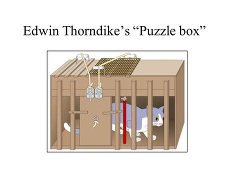 "Edwin Thorndike's ""Puzzle box"". Thorndike's Law of Effect Your text's paraphrase (p. 226): The law of effect states that behaviors leading to a satisfying."