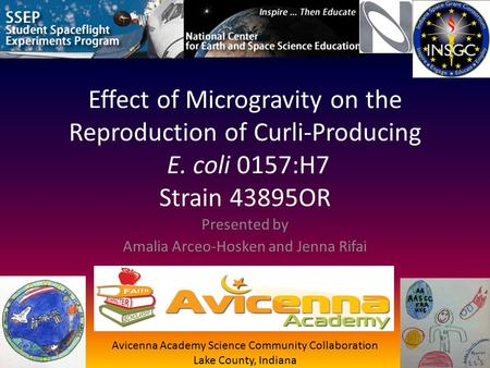 Effect of Microgravity on the Reproduction of Curli-Producing E. coli 0157:H7 Strain 43895OR Presented by Amalia Arceo-Hosken and Jenna Rifai Avicenna.