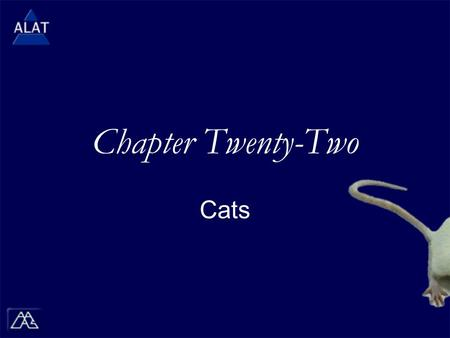 "Chapter Twenty-Two Cats.  If viewing this in PowerPoint, use the icon to run the show (bottom left of screen).  Mac users go to ""Slide Show > View Show"""
