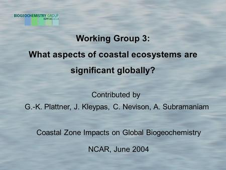 Working Group 3: What aspects of coastal ecosystems are significant globally? Coastal Zone Impacts on Global Biogeochemistry NCAR, June 2004 Contributed.