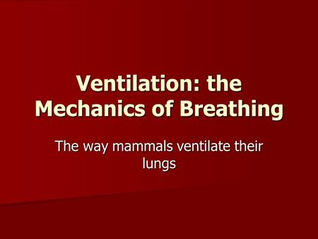 Ventilation: the Mechanics of Breathing The way mammals ventilate their lungs.