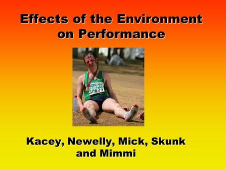 Effects of the Environment on Performance Kacey, Newelly, Mick, Skunk and Mimmi.